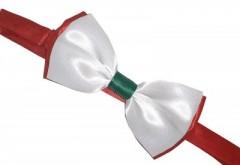 Csokornyakkendő - Tricolor II. Mintás
